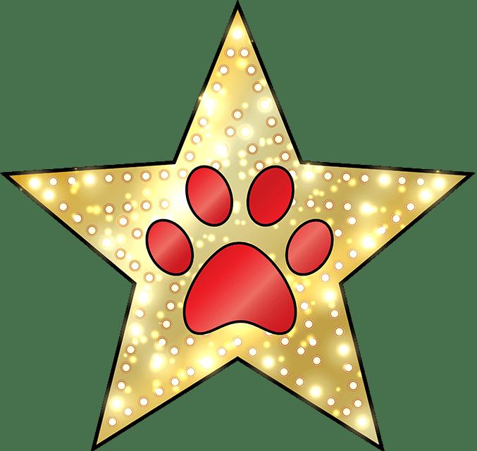 Lucky Dog Mobile Spa